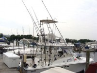 JM Fishing Charters