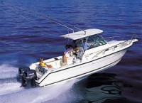 Just Look'N Great Lakes Charters