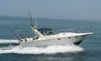 Free Style Charters