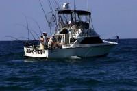 Hawg-Tide Sportfishing Charters
