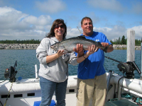 Wipeout Charters